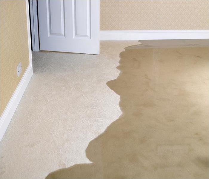 Water Damage The Top Methods And Tool Of Removing Moisture From Your Rogers Home