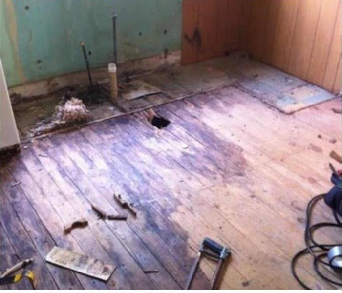 Mold Remediation Leaks in a Bella Vista Kitchen Can Cause Mold Growth