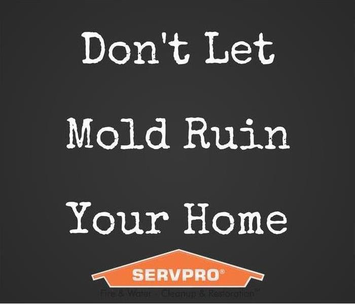 Don't let mold ruin your home