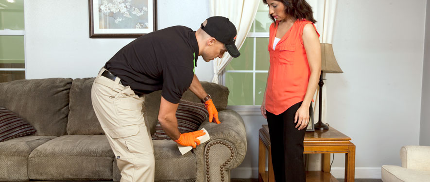 Bentonville, AR carpet upholstery cleaning